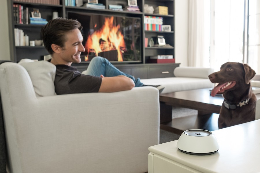 introducing-josh-ai-turbocharged-voice-control-for-the-smart-home